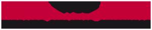 Logo-WSS_Internet_RGB_transparent